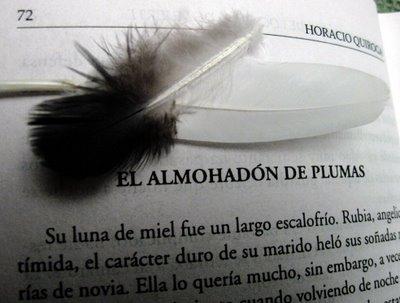 El_Almohadon_de_Plumas